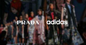 Adidas x Prada: In arrivo la collaborazione dell'anno?