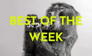Il best of the week 20-26 marzo 2021 tra Gucci e Adidas
